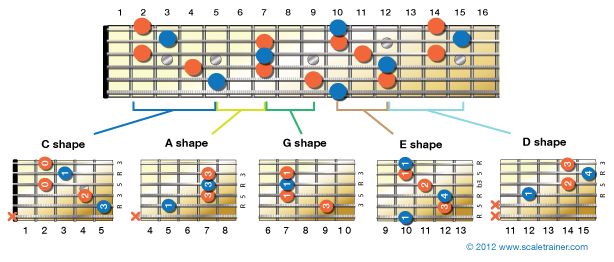 The CAGED System: An Overview - Global Guitar Network